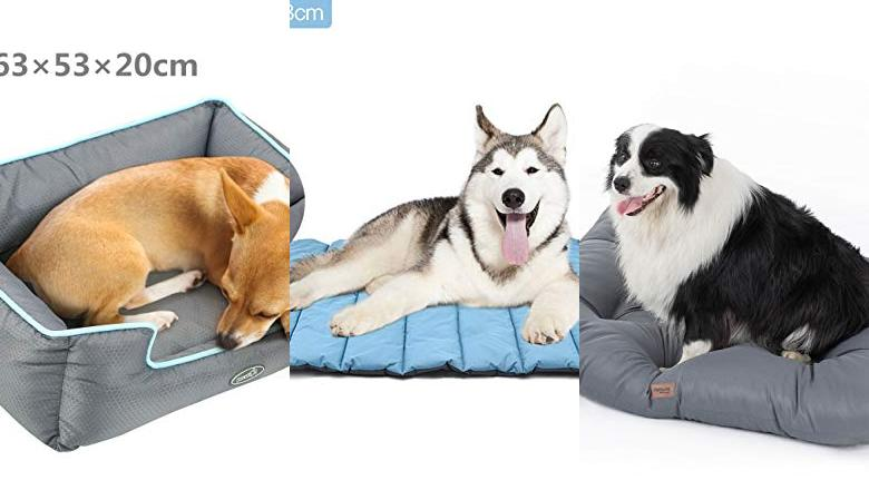 CAMAS PARA PERROS IMPERMEABLE LAVABLE